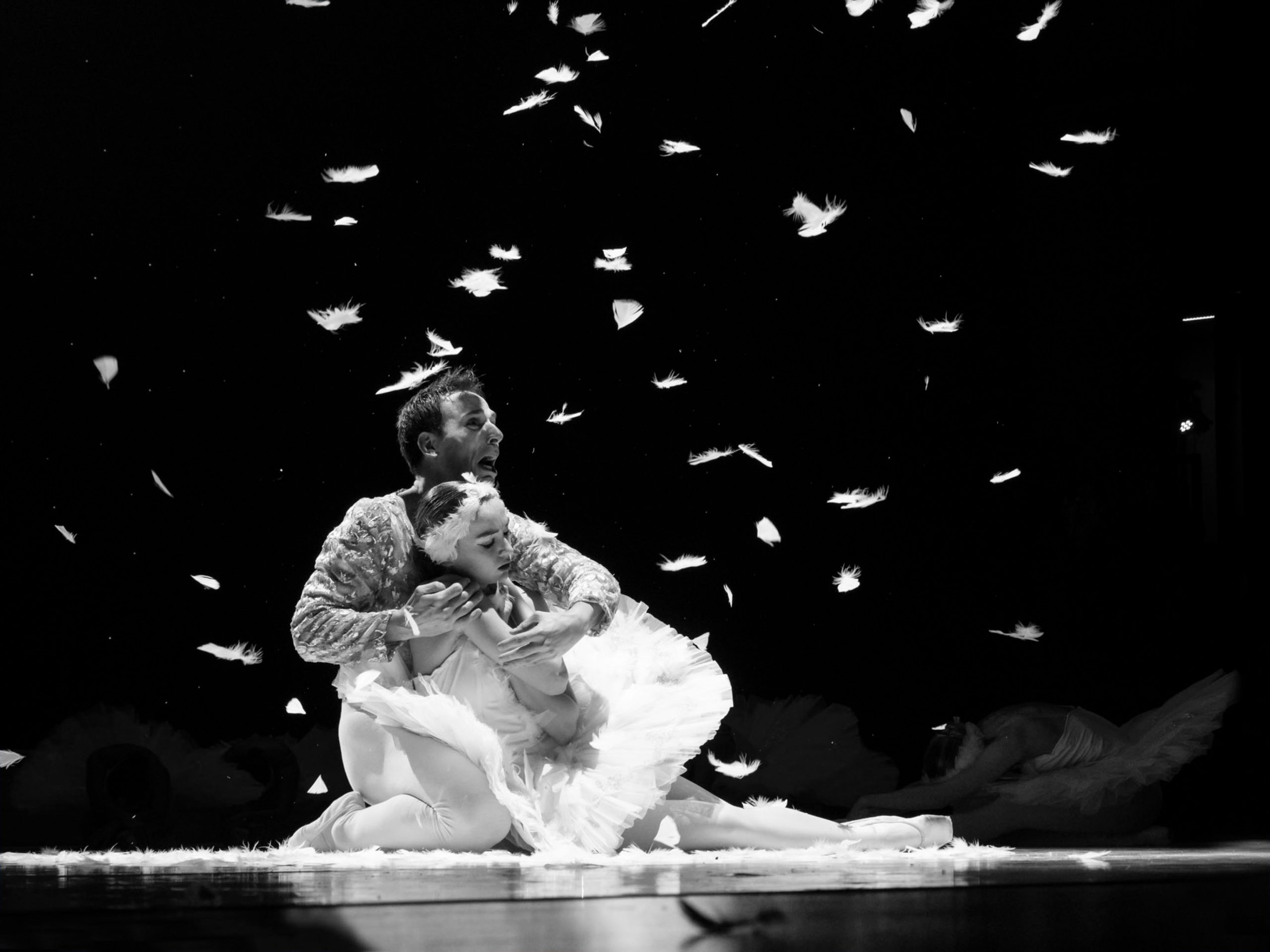 Company V Balletschool Veronique lenaers_ slider 9